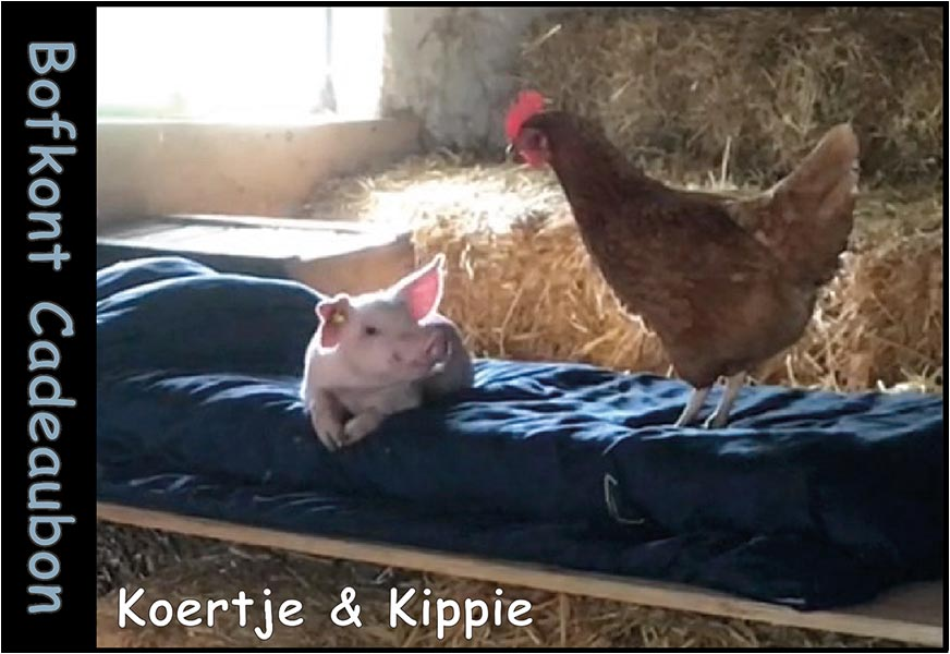 Koertje & Kippie